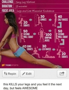 New Circuit Workout
